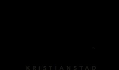 vickys salong kristianstad